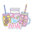 so fresh summer juice vector image vector image