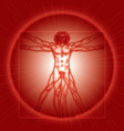 The Vitruvian Man vector image vector image