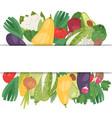 vegetables banner with white space vector image vector image