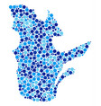 blue circles quebec province map composition vector image