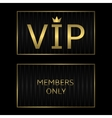 Golden VIP card vector image vector image