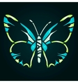 Green blue butterfly vector image vector image