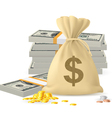 Piles of money vector image vector image