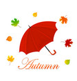 red umbrella and autumn leaves vector image vector image