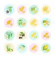 set flat icons groats vector image