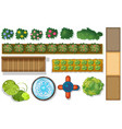 top view of plants and pond in garden vector image vector image