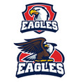 eagle mascot in set vector image vector image