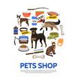 flat pet shop concept vector image