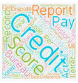 How Did Your Credit Score Today text background vector image vector image