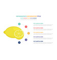 lemon infographic template concept with five vector image vector image