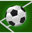 Soccer Ball With Green Background and Lines vector image