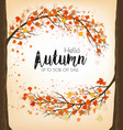 enjoy autumn sale background with trees and vector image vector image