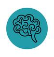 hand drawn brain icon vector image vector image