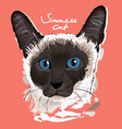 siamese cat painting poster vector image
