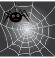 spider in a cobweb vector image