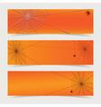 spider web header vector image