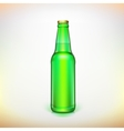 Glass beer green bottle Product packing vector image