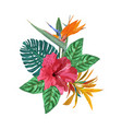 bouquet with tropical plants set with palm leaves vector image