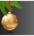 Christmas ball green fir branches on dark vector image