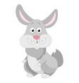 cute grey rabbit vector image