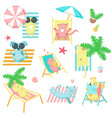 cute pet animals taking rest on beach icons vector image