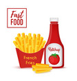 fast food collection - fries and ketchup vector image vector image