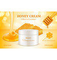 honey cosmetics nature sweet golden skin care vector image vector image