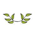 leaf plant decorative icon vector image