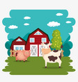 pigs in the farm scene vector image