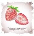 Vintage card with strawberry vector image