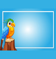 border template with parrot bird vector image