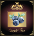 blueberries vector image vector image