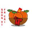 chinese new year mandarin orange vector image vector image