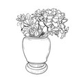 drawing sketch of vase with flowers vector image
