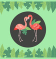 flamingo couple with bright green jungle palm vector image