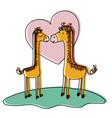 giraffes couple over grass in watercolor vector image vector image