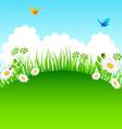 grass backgr vector image