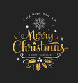 merry christmas golden lettering white snowflake vector image