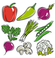 set of vegetable pepper onions beans vector image vector image