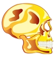 Skull from gild in profile vector image vector image