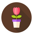 Spring Tulip Flower in the Pot Circle Icon vector image