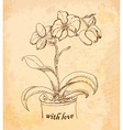 Vintage old background with orchid with love Hand vector image vector image