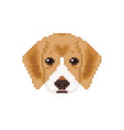 beagle puppy head in pixel art style dog vector image vector image