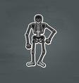 black skeleton vector image vector image