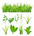 grass realistic ecology set green herbs leaves vector image