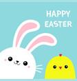 happy easter bunny rabbit chicken bird chick face vector image vector image
