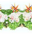 tropical border seamless background strelitzia vector image vector image