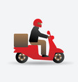 delivery food service man on motorcycle vector image