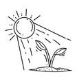 gardening sun icon hand drawn icon outline black vector image vector image