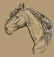 horse portrait-15 on brown background vector image vector image